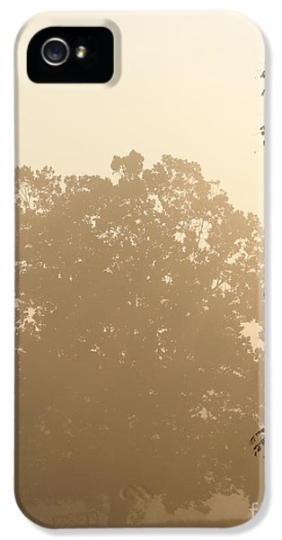 Diffusion iPhone 5 Cases - Fog over Countryside iPhone 5 Case by Olivier Le Queinec