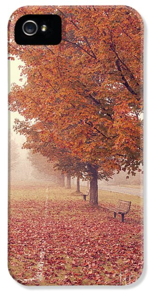 Road iPhone 5 Cases - Foggy Autumn Morning Etna New Hampshire iPhone 5 Case by Edward Fielding