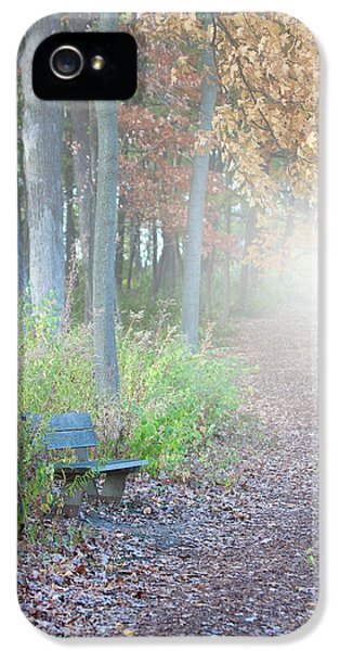 Scenic iPhone 5 Cases - Foggy Autumn Morning iPhone 5 Case by Sebastian Musial