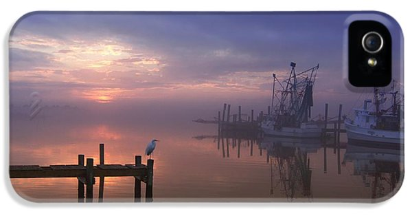 Foggy Sunset Over Swansboro IPhone 5 / 5s Case by Benanne Stiens