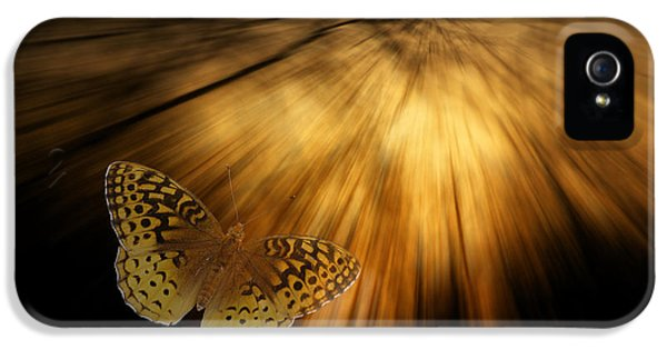 Following The Light Yellow Butterfly IPhone 5 / 5s Case by Thomas Woolworth