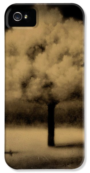 Infrared iPhone 5 Cases - Forbidding Shadows iPhone 5 Case by Gothicolors Donna Snyder