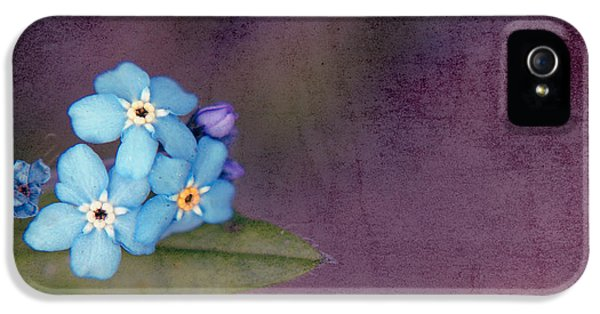 Forget Me Not 02 - S0304bt02b IPhone 5 / 5s Case by Variance Collections