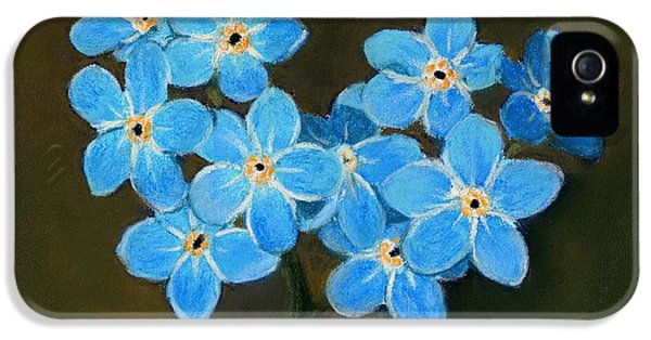 Forget Me Not iPhone 5 Cases - Forget-Me-Not iPhone 5 Case by Anastasiya Malakhova