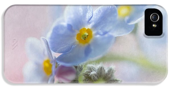 Forget Me Not iPhone 5 Cases - Forget Me Not Square iPhone 5 Case by Angie Vogel