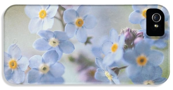 Forget Me Not iPhone 5 Cases - Forget Me Nots iPhone 5 Case by Sylvia Cook