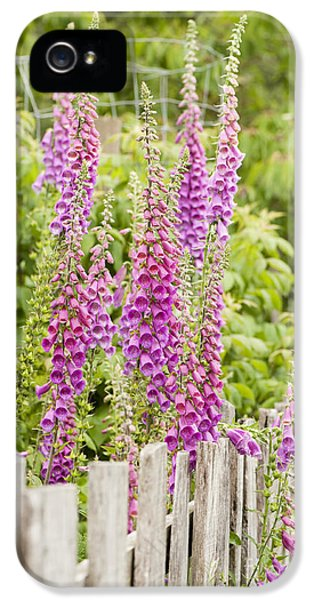 Tubular iPhone 5 Cases - Foxglove Fence iPhone 5 Case by Anne Gilbert