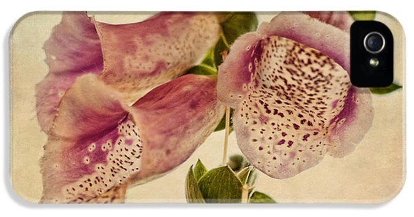 Poisonous iPhone 5 Cases - Foxglove Textures iPhone 5 Case by John Edwards