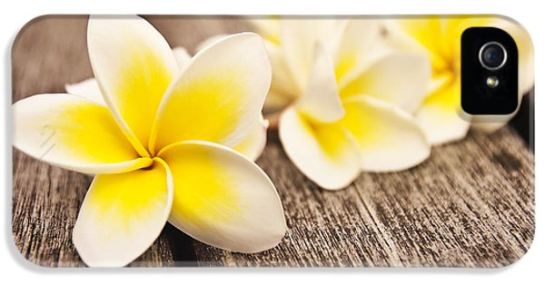 Frangipani Flower IPhone 5 / 5s Case by Delphimages Photo Creations