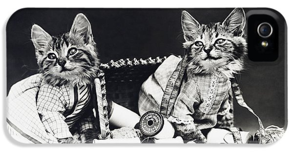 Frees Kittens, C1915 IPhone 5 / 5s Case by Granger