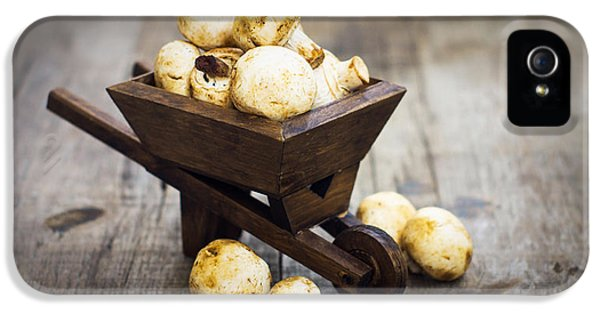 Forrest iPhone 5 Cases - Fresh Muschrooms in a miniature wheelbarrow iPhone 5 Case by Aged Pixel