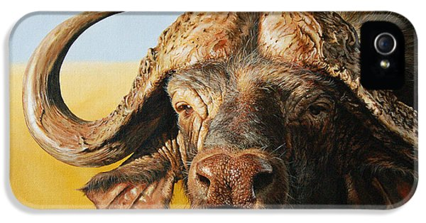 African Buffalo IPhone 5 / 5s Case by Mario Pichler