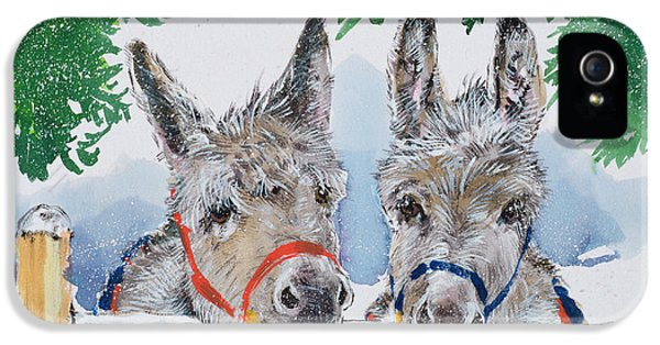 Donkey iPhone 5 Cases - Friends In The Field, 1996 Wc iPhone 5 Case by Diane Matthes