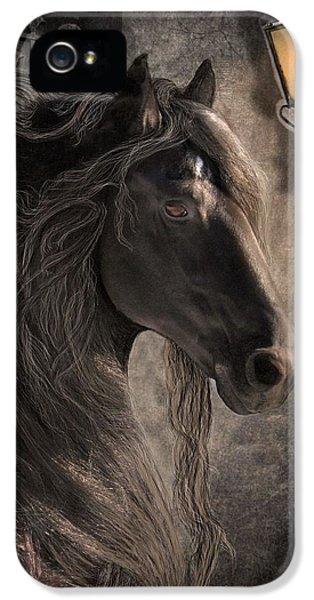 Mane iPhone 5 Cases - Friesian Glow iPhone 5 Case by Fran J Scott