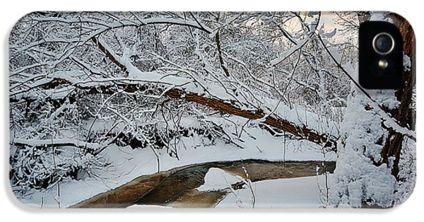No People iPhone 5 Cases - Frozen Creek iPhone 5 Case by Sebastian Musial