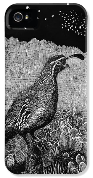 Organ iPhone 5 Cases - Gamblels Quail Lucy in the sky iPhone 5 Case by Jack Pumphrey