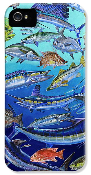 Gamefish Collage In0031 IPhone 5 / 5s Case by Carey Chen