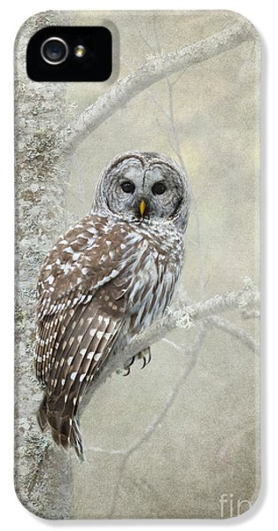 Prey iPhone 5 Cases - Gaurdian of the Woods iPhone 5 Case by Reflective Moment Photography And Digital Art Images