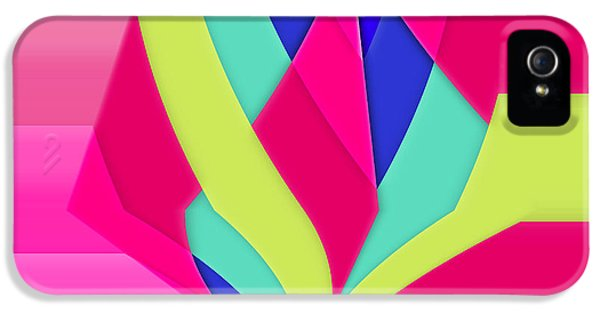 Abstract Digital Art iPhone 5 Cases - Geomox - 05bc02 iPhone 5 Case by Variance Collections