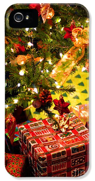Wait iPhone 5 Cases - Gifts under Christmas tree iPhone 5 Case by Elena Elisseeva