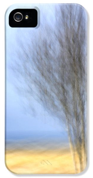 Drive iPhone 5 Cases - Glimpse of Trees Sand and Beach iPhone 5 Case by Carol Leigh