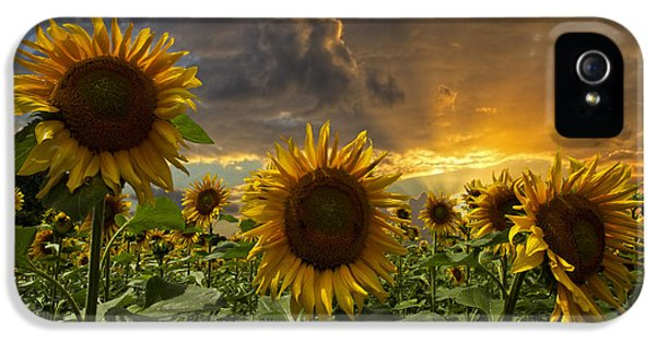 Glory IPhone 5 / 5s Case by Debra and Dave Vanderlaan
