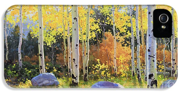 Foliage iPhone 5 Cases - Glowing Aspen  iPhone 5 Case by Gary Kim