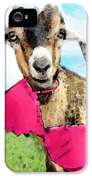 Goat Art - Oh You're Home IPhone 5 / 5s Case by Sharon Cummings