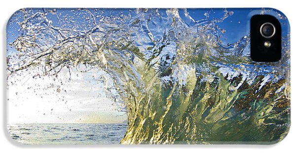 Sea iPhone 5 Cases - Gold Crown iPhone 5 Case by Sean Davey