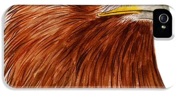 Eagle iPhone 5 Cases - Golden Eagle iPhone 5 Case by Ele Grafton