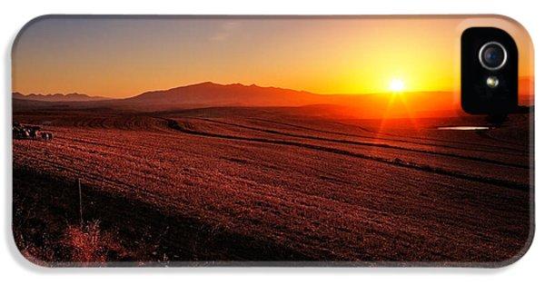 Farmland iPhone 5 Cases - Golden Sunrise over Farmland iPhone 5 Case by Johan Swanepoel