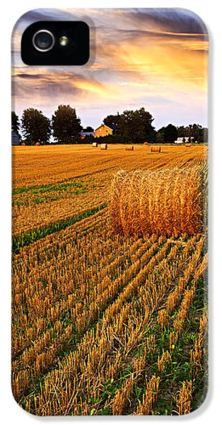 Farmland iPhone 5 Cases - Golden sunset over farm field with hay bales iPhone 5 Case by Elena Elisseeva