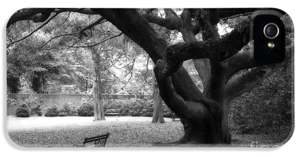 Gothic Surreal Black And White South Carolina Angel Oak Trees Park Landscape IPhone 5 / 5s Case by Kathy Fornal