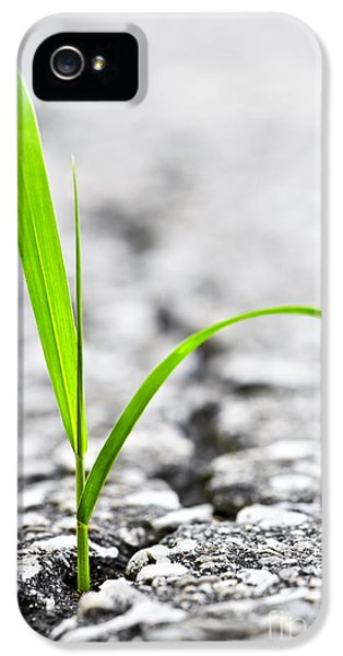 Grass In Asphalt IPhone 5 / 5s Case by Elena Elisseeva