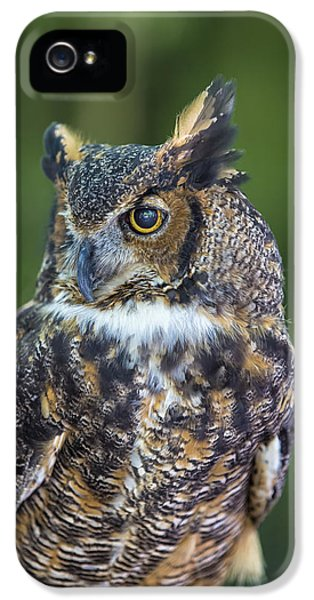 Owl iPhone 5 Cases - Great Horned Owl iPhone 5 Case by Bill Tiepelman