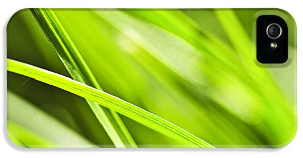 Summer iPhone 5 Cases - Green grass abstract iPhone 5 Case by Elena Elisseeva