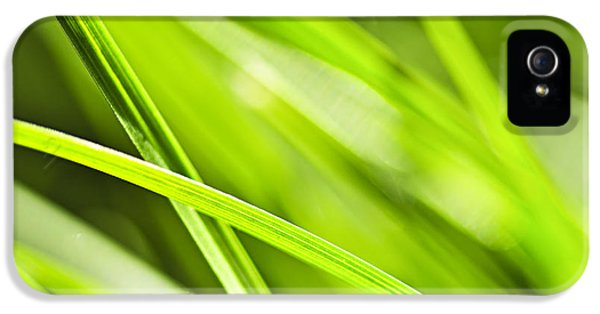 Growth iPhone 5 Cases - Green grass abstract iPhone 5 Case by Elena Elisseeva