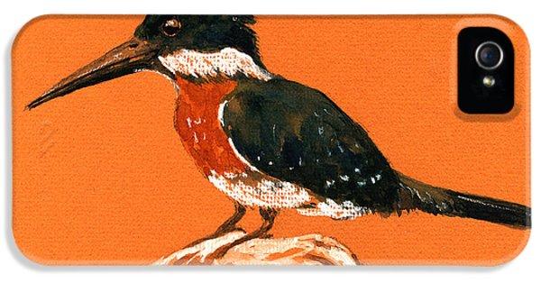 Green Kingfisher IPhone 5 / 5s Case by Juan  Bosco