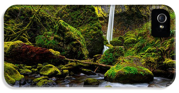 Pacific Northwest iPhone 5 Cases - Green Seasons iPhone 5 Case by Chad Dutson