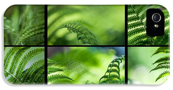 Green World. Polyptich For Interiors IPhone 5 / 5s Case by Jenny Rainbow