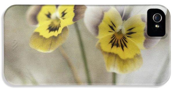 White Flowers iPhone 5 Cases - Growing Wild iPhone 5 Case by Priska Wettstein