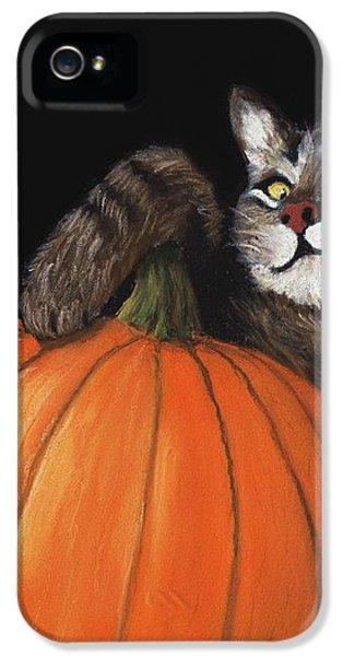 Halloween Cat IPhone 5 / 5s Case by Anastasiya Malakhova
