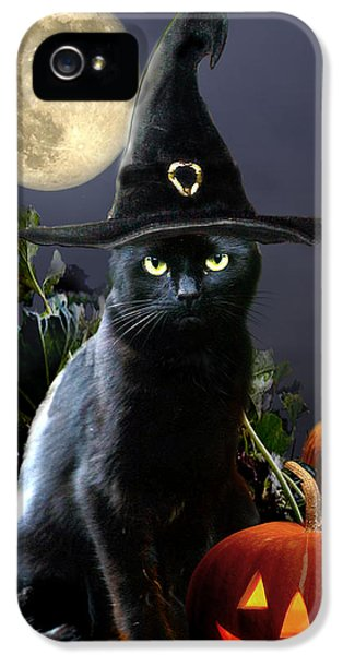 Halloween iPhone 5 Cases - Witchy black Halloween Cat iPhone 5 Case by Gina Femrite