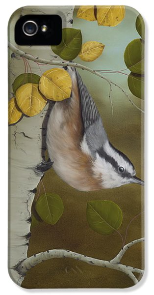 Greeting iPhone 5 Cases - Hanging Around-Red Breasted Nuthatch iPhone 5 Case by Rick Bainbridge