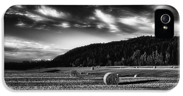Meadow iPhone 5 Cases - Harvest iPhone 5 Case by Erik Brede