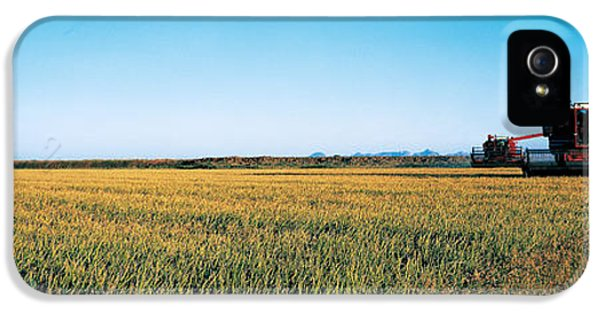 Reaper iPhone 5 Cases - Harvested Rice Field Glenn Co Ca Usa iPhone 5 Case by Panoramic Images