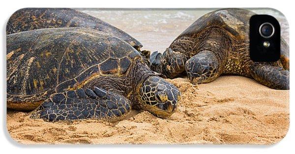 Hawaiian Green Sea Turtles 1 - Oahu Hawaii IPhone 5 / 5s Case by Brian Harig