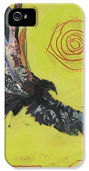 Sun iPhone 5 Cases - Hawk iPhone 5 Case by Shelli Walters