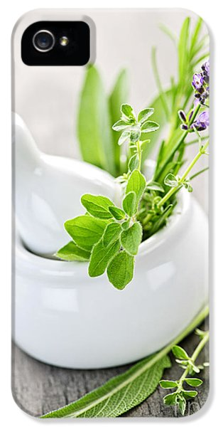 Pharmaceutical iPhone 5 Cases - Healing herbs in mortar and pestle iPhone 5 Case by Elena Elisseeva