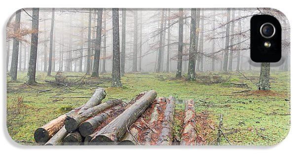 Firewood iPhone 5 Cases - Heap Of Firewood On Forest iPhone 5 Case by Mikel Martinez de Osaba